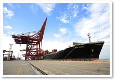 Guangzhou Teng Yue Import and Export Co , Ltd